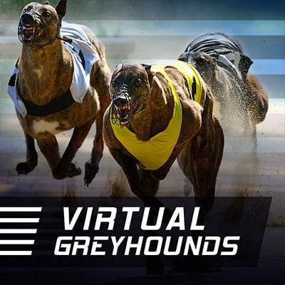 Instant Greyhounds Sports Virtuels